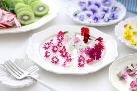 10款最佳食用花卉指南